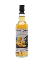 Ben Nevis 1996  |  24 Year Old  |  Whisky Sponge 22A