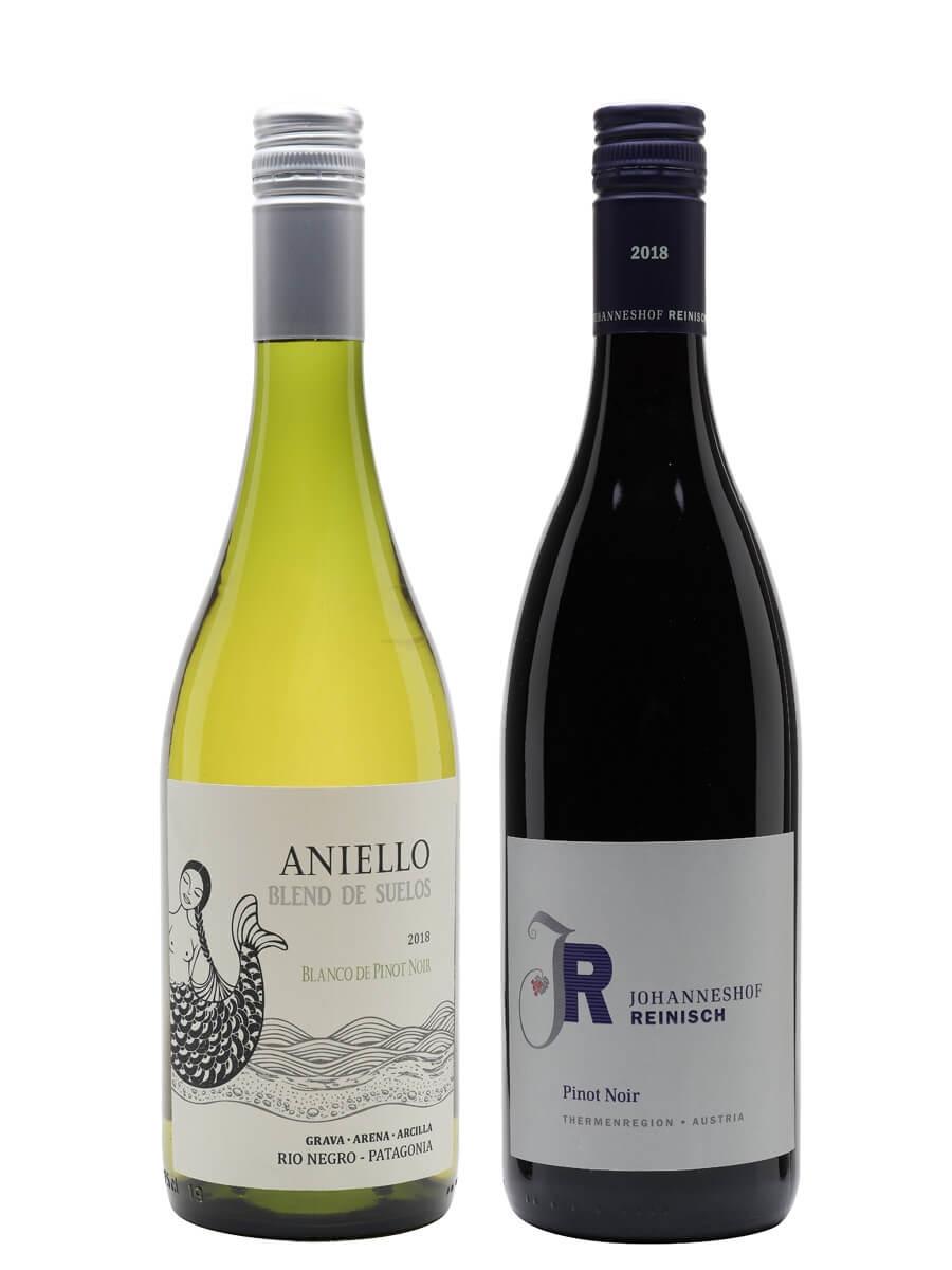 Pinot Not So Noir Wine Duo